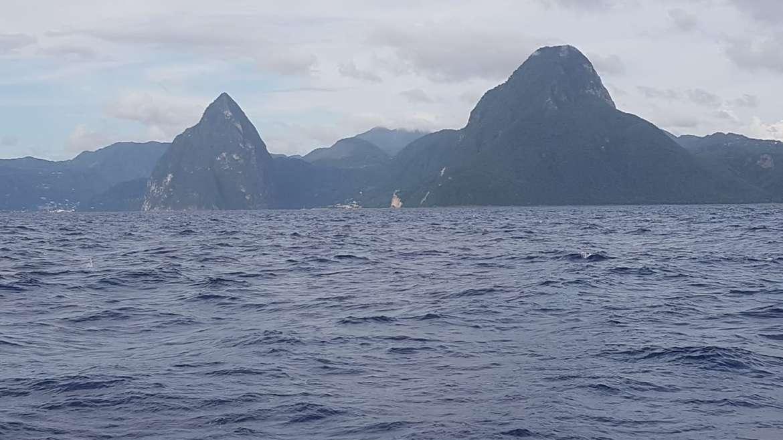 Petit coucou en direct des pitons de Sainte Lucie : retour demain en Martinique …