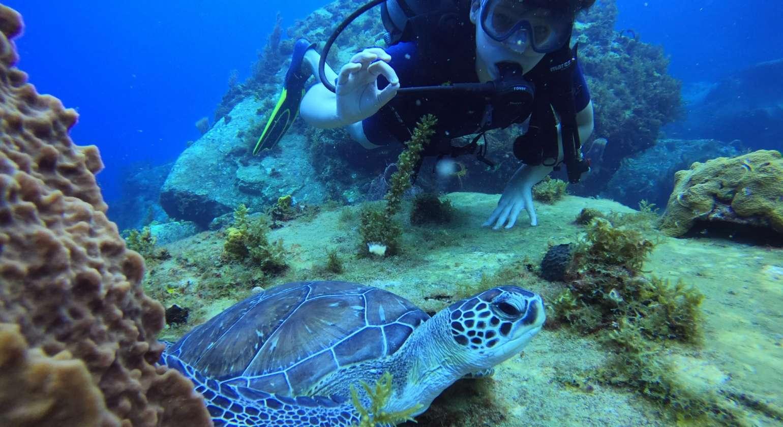 Photo collector : un souvenir de baptême avec Joséphine la tortue…